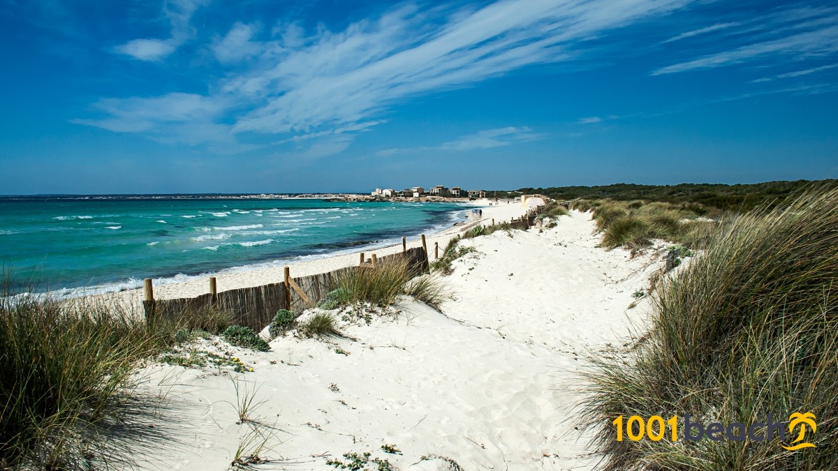 Es Trenc beach Mallorca - Tripkay