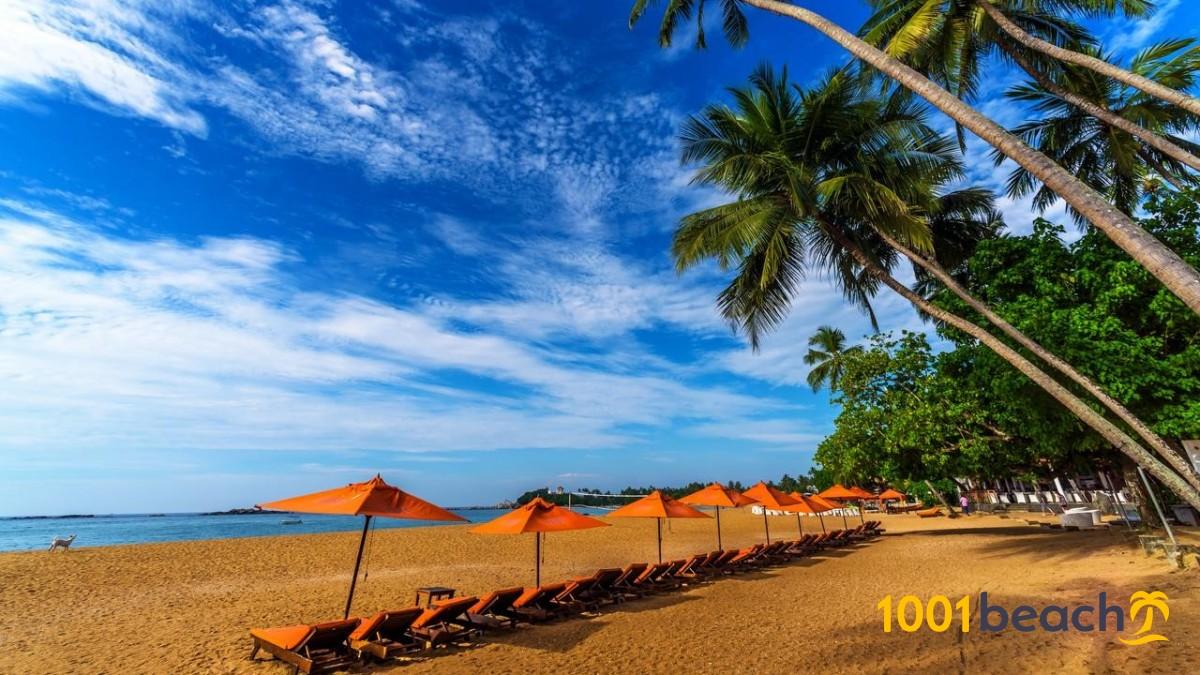 Унаватуна, Шри-Ланка: все про пляж Унаватуна, отели и отдых