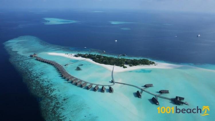 Остров Кокоа