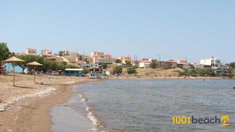 Гавафас