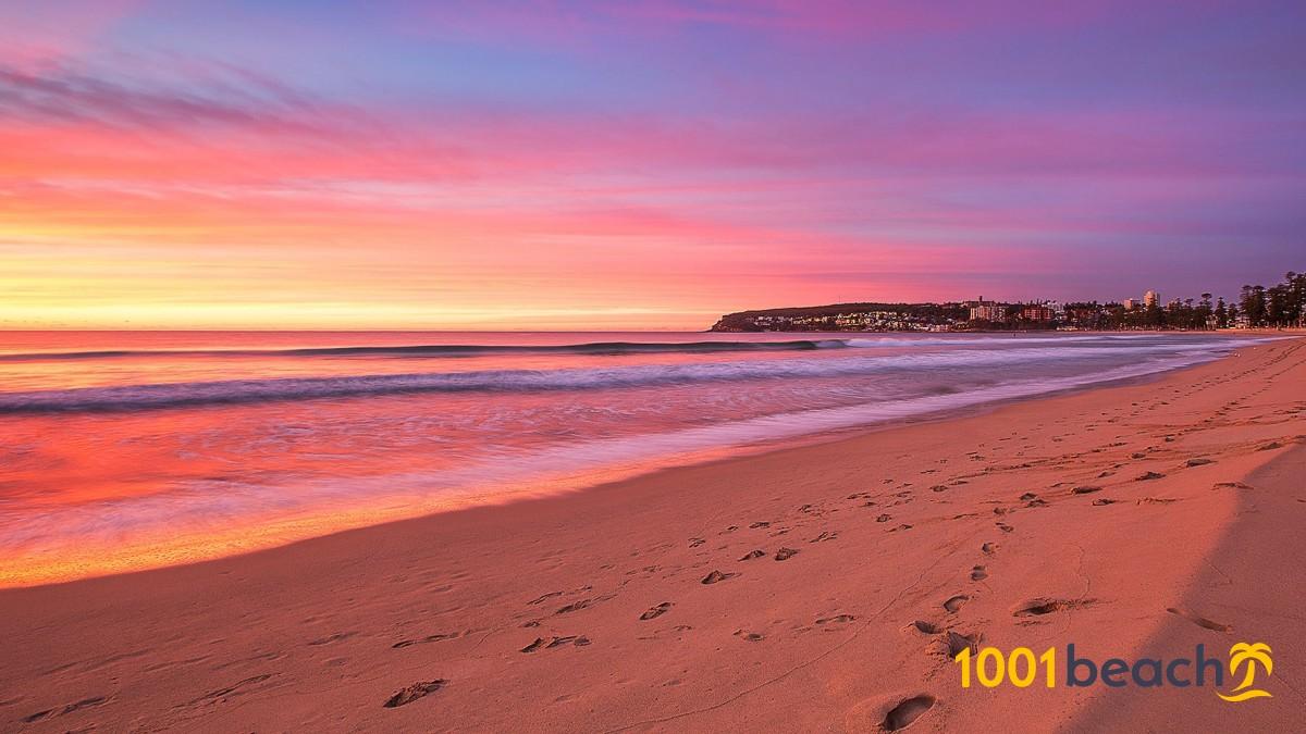 perus northern beaches died - HD1600×800